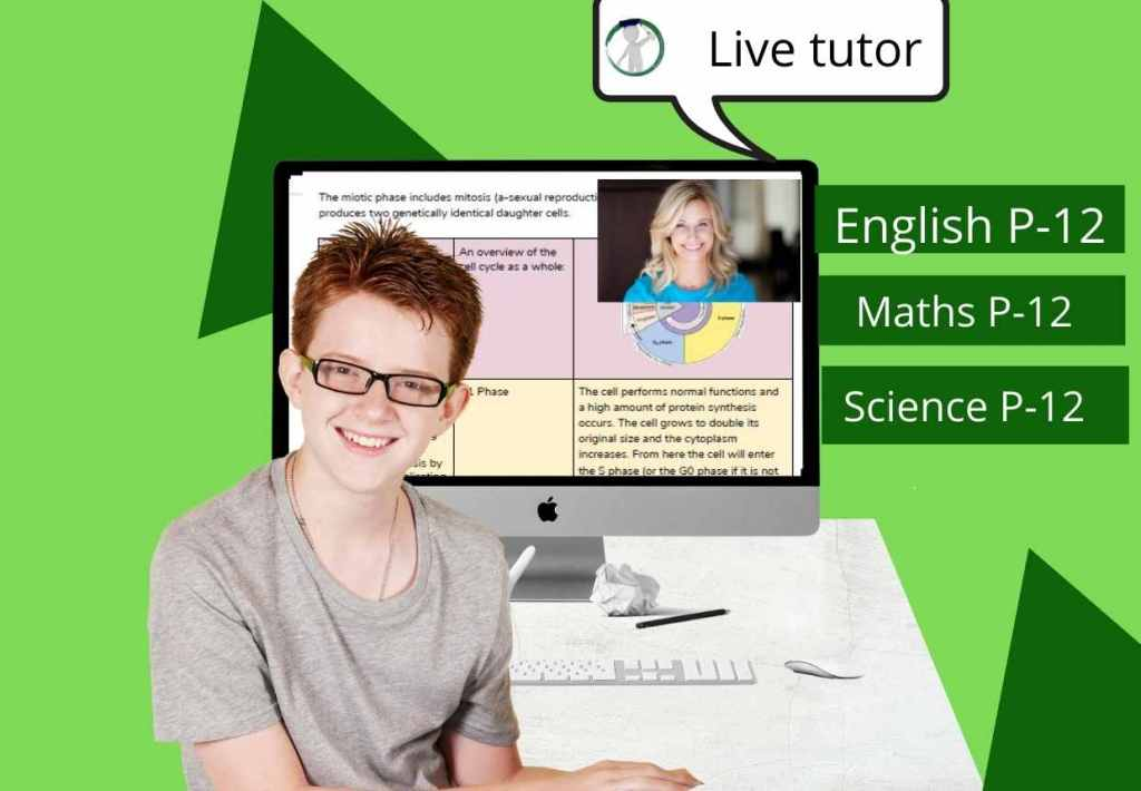 student studying with online tutor